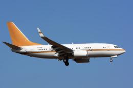 banshee02さんが、成田国際空港で撮影した南山公務 737-7ZH BBJの航空フォト(飛行機 写真・画像)