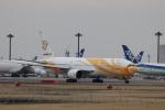 KAZFLYERさんが、成田国際空港で撮影したノックスクート 777-212/ERの航空フォト(飛行機 写真・画像)