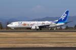 sumihan_2010さんが、静岡空港で撮影した全日空 737-881の航空フォト(飛行機 写真・画像)