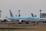 KAZFLYERさんが、成田国際空港で撮影した大韓航空 777-3B5/ERの航空フォト(飛行機 写真・画像)