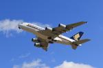 anyongさんが、成田国際空港で撮影したシンガポール航空 A380-841の航空フォト(飛行機 写真・画像)