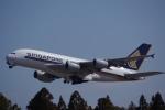 JA8037さんが、成田国際空港で撮影したシンガポール航空 A380-841の航空フォト(飛行機 写真・画像)