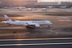 てーとくさんが、羽田空港で撮影した日本航空 A350-941XWBの航空フォト(飛行機 写真・画像)