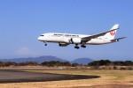 O-TOTOさんが、静岡空港で撮影した日本航空 787-8 Dreamlinerの航空フォト(飛行機 写真・画像)