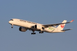 Hiro-hiroさんが、羽田空港で撮影した日本航空 A350-941XWBの航空フォト(飛行機 写真・画像)