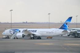 ぽっぽさんが、カイロ国際空港で撮影したエジプト航空 787-9の航空フォト(飛行機 写真・画像)
