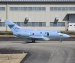 ONOさんが、名古屋飛行場で撮影した航空自衛隊 U-125A (BAe-125-800SM)の航空フォト(飛行機 写真・画像)