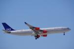 JA8037さんが、成田国際空港で撮影したスカンジナビア航空 A340-313Xの航空フォト(飛行機 写真・画像)