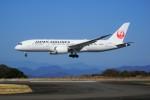 yoshibouさんが、静岡空港で撮影した日本航空 787-8 Dreamlinerの航空フォト(飛行機 写真・画像)