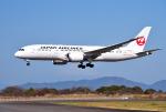 mojioさんが、静岡空港で撮影した日本航空 787-8 Dreamlinerの航空フォト(飛行機 写真・画像)