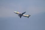 TAK_HND_NRTさんが、羽田空港で撮影したスカイネットアジア航空 737-46Qの航空フォト(飛行機 写真・画像)