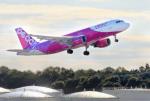 CL&CLさんが、成田国際空港で撮影したピーチ A320-214の航空フォト(飛行機 写真・画像)