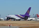 銀苺さんが、成田国際空港で撮影したタイ国際航空 A380-841の航空フォト(飛行機 写真・画像)