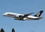 銀苺さんが、成田国際空港で撮影したシンガポール航空 A380-841の航空フォト(飛行機 写真・画像)