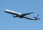 銀苺さんが、羽田空港で撮影した全日空 777-381/ERの航空フォト(飛行機 写真・画像)