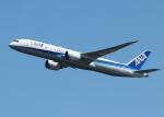 銀苺さんが、羽田空港で撮影した全日空 787-9の航空フォト(飛行機 写真・画像)