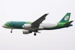 BTYUTAさんが、ロンドン・ヒースロー空港で撮影したエア・リンガス A320-214の航空フォト(飛行機 写真・画像)