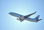 リュウキさんが、関西国際空港で撮影した日本トランスオーシャン航空 737-8Q3の航空フォト(飛行機 写真・画像)