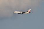 Cスマイルさんが、成田国際空港で撮影した日本航空 737-846の航空フォト(飛行機 写真・画像)