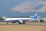 ゆう改めてさんが、熊本空港で撮影した全日空 777-281/ERの航空フォト(飛行機 写真・画像)