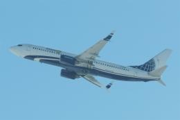 木人さんが、新千歳空港で撮影したマイアミ・エア・インターナショナル 737-8K5の航空フォト(飛行機 写真・画像)