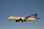 kenzy201さんが、成田国際空港で撮影したユナイテッド航空 787-9の航空フォト(飛行機 写真・画像)