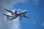 T.Sazenさんが、伊丹空港で撮影したエアーニッポンネットワーク DHC-8-402Q Dash 8の航空フォト(飛行機 写真・画像)