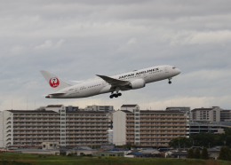 銀苺さんが、伊丹空港で撮影した日本航空 787-8 Dreamlinerの航空フォト(飛行機 写真・画像)
