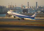 銀苺さんが、羽田空港で撮影した全日空 777-281の航空フォト(飛行機 写真・画像)
