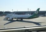 銀苺さんが、成田国際空港で撮影したエバー航空 787-10の航空フォト(飛行機 写真・画像)