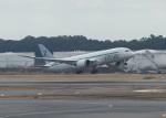 銀苺さんが、成田国際空港で撮影したZIPAIR 787-8 Dreamlinerの航空フォト(飛行機 写真・画像)