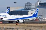 panchiさんが、成田国際空港で撮影した全日空 A320-271Nの航空フォト(飛行機 写真・画像)
