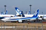 panchiさんが、成田国際空港で撮影した全日空 737-881の航空フォト(飛行機 写真・画像)