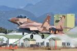 ワイエスさんが、新田原基地で撮影した航空自衛隊 F-15DJ Eagleの航空フォト(飛行機 写真・画像)