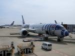 ヒロリンさんが、成田国際空港で撮影した全日空 787-9の航空フォト(飛行機 写真・画像)