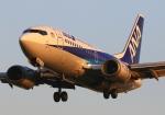 LOTUSさんが、伊丹空港で撮影したANAウイングス 737-54Kの航空フォト(飛行機 写真・画像)