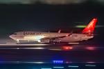 こうきさんが、成田国際空港で撮影したイースター航空 737-808の航空フォト(飛行機 写真・画像)