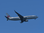 Dream2016さんが、中部国際空港で撮影した日本航空 737-846の航空フォト(飛行機 写真・画像)