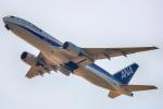 こうきさんが、羽田空港で撮影した全日空 777-281/ERの航空フォト(飛行機 写真・画像)