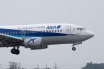 ぎんじろーさんが、成田国際空港で撮影した全日空 737-54Kの航空フォト(飛行機 写真・画像)