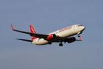 pringlesさんが、福岡空港で撮影したイースター航空 737-8KNの航空フォト(飛行機 写真・画像)