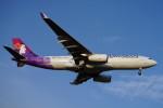 pringlesさんが、福岡空港で撮影したハワイアン航空 A330-243の航空フォト(飛行機 写真・画像)