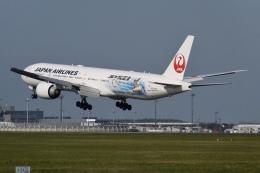 flying_horseさんが、成田国際空港で撮影した日本航空 777-346/ERの航空フォト(飛行機 写真・画像)