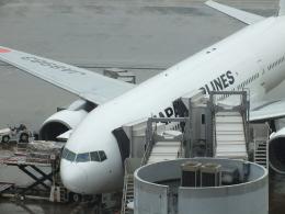 エルさんが、羽田空港で撮影した日本航空 777-246の航空フォト(飛行機 写真・画像)
