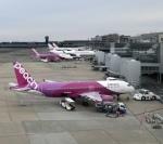 Smyth Newmanさんが、成田国際空港で撮影したピーチ A320-214の航空フォト(飛行機 写真・画像)