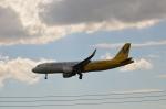 hareotokoさんが、成田国際空港で撮影したバニラエア A320-214の航空フォト(飛行機 写真・画像)