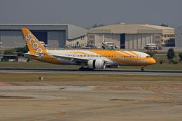 tsubameさんが、ドンムアン空港で撮影したスクート 787-8 Dreamlinerの航空フォト(飛行機 写真・画像)