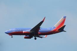 だいすけさんが、ロナルド・レーガン・ワシントン・ナショナル空港で撮影したサウスウェスト航空 737-7H4の航空フォト(飛行機 写真・画像)