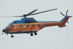 MOR1(新アカウント)さんが、名古屋飛行場で撮影した新日本ヘリコプター AS332L1 Super Pumaの航空フォト(飛行機 写真・画像)