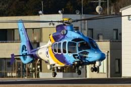 筑波のヘリ撮りさんが、つくばヘリポートで撮影した東邦航空 EC155Bの航空フォト(飛行機 写真・画像)